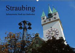 Straubing, liebenswerte Stadt im Gäuboden (Wandkalender 2019 DIN A2 quer) von Stein,  Karin