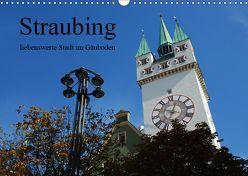 Straubing, liebenswerte Stadt im Gäuboden (Wandkalender 2019 DIN A3 quer) von Stein,  Karin