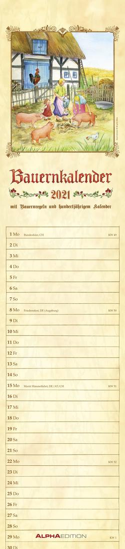 Streifenplaner Bauenkalender 2021 – Streifen-Kalender 11,3x49x5 cm – mit 100-jährigem Kalender und Bauernregeln – Wandplaner – Alpha Edition