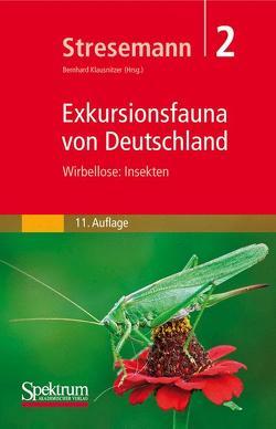 Stresemann – Exkursionsfauna von Deutschland, Band 2: Wirbellose: Insekten von Klausnitzer,  Bernhard, Stresemann,  Erwin
