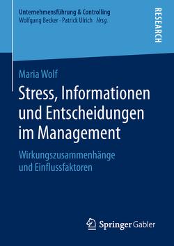 Stress, Informationen und Entscheidungen im Management von Wolf,  Maria