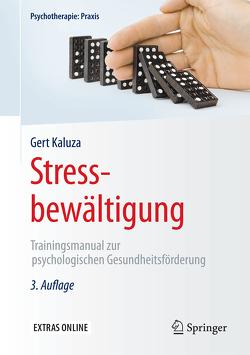 Stressbewältigung von Kaluza,  Gert