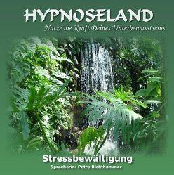 Stressbewältigung von Bickel,  Elmar, Richthammer,  Petra