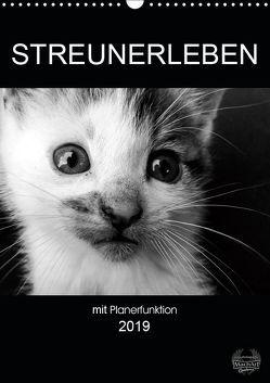 Streunerleben mit Planerfunktion (Wandkalender 2019 DIN A3 hoch) von Ira Schulz,  Melanie