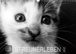 STREUNERLEBEN (Wandkalender 2019 DIN A3 quer) von Ira Schulz,  Melanie