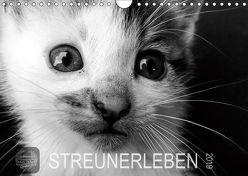STREUNERLEBEN (Wandkalender 2019 DIN A4 quer) von Ira Schulz,  Melanie