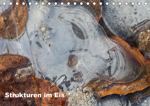 Strukturen im Eis (Tischkalender 2019 DIN A5 quer) von Martin,  Wilfried