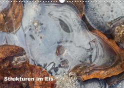 Strukturen im Eis (Wandkalender 2019 DIN A3 quer) von Martin,  Wilfried