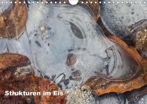 Strukturen im Eis (Wandkalender 2019 DIN A4 quer) von Martin,  Wilfried