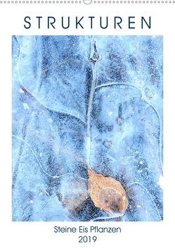Strukturen – Steine, Eis, Pflanzen (Wandkalender 2019 DIN A2 hoch) von Baier,  Viktoria