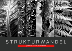 Strukturwandel, grafische Muster in der Natur (Wandkalender 2019 DIN A2 quer) von Fotokullt
