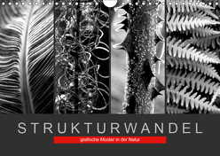 Strukturwandel, grafische Muster in der Natur (Wandkalender 2019 DIN A4 quer) von Fotokullt