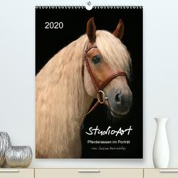 StudioArt Pferderassen im Porträt (Premium, hochwertiger DIN A2 Wandkalender 2020, Kunstdruck in Hochglanz) von Heüveldop,  Sabine