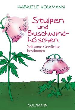 Stulpen und Buschwindhöschen von Volkmann,  Gabriele