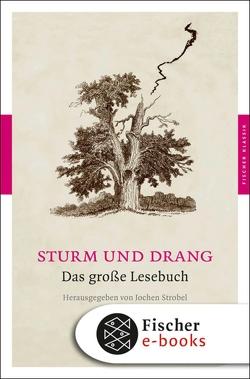 Sturm und Drang von Strobel,  Jochen