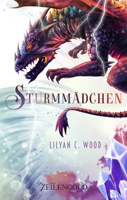Sturmmädchen von Wood,  Lilyan C.