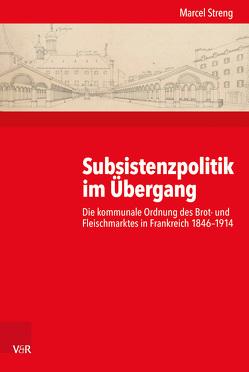 Subsistenzpolitik im Übergang von Streng,  Marcel