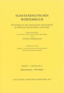 Sudetendeutsches Wörterbuch. Band V, Lieferung 6 von Ehrismann,  Otfrid, Hardt,  Isabelle, Hofmann-Käs,  Bettina, Kesselgruber,  Bernd