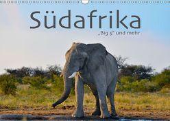 Südafrika – Big 5 und mehr (Wandkalender 2019 DIN A3 quer) von Styppa,  Robert