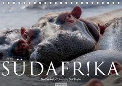Südafrika – Die Tierwelt (Tischkalender 2019 DIN A5 quer) von Bruhn,  Olaf