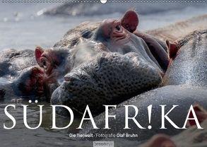 Südafrika – Die Tierwelt (Wandkalender 2018 DIN A2 quer) von Bruhn,  Olaf