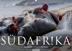 Südafrika – Die Tierwelt (Wandkalender 2019 DIN A2 quer) von Bruhn,  Olaf