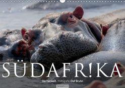 Südafrika – Die Tierwelt (Wandkalender 2019 DIN A3 quer) von Bruhn,  Olaf