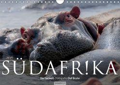 Südafrika – Die Tierwelt (Wandkalender 2019 DIN A4 quer) von Bruhn,  Olaf