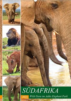 SÜDAFRIKA Wild-Tiere im Addo Elephant Park (Wandkalender 2021 DIN A2 hoch) von Fraatz,  Barbara