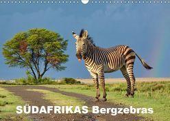 SÜDAFRIKAS Bergzebras (Wandkalender 2019 DIN A3 quer) von Thula