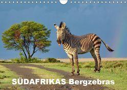 SÜDAFRIKAS Bergzebras (Wandkalender 2019 DIN A4 quer) von Thula