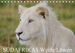 SÜDAFRIKAS Weiße Löwen (Tischkalender 2019 DIN A5 quer) von Thula