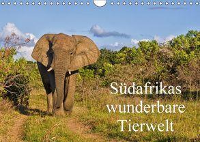 Südafrikas wunderbare Tierwelt (Wandkalender 2018 DIN A4 quer) von Peters,  Friedhelm