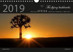 Südliches Afrika 2019 (Wandkalender 2019 DIN A4 quer) von flying bushhawks,  The