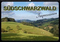 Südschwarzwald – Impressionen (Wandkalender 2019 DIN A2 quer) von Flori0