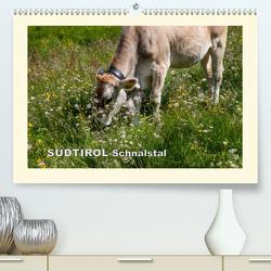 SÜDTIROL-Schnalstal (Premium, hochwertiger DIN A2 Wandkalender 2020, Kunstdruck in Hochglanz) von Walliser,  Richard