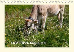 SÜDTIROL-Schnalstal (Tischkalender 2019 DIN A5 quer) von Walliser,  Richard