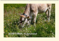 SÜDTIROL-Schnalstal (Wandkalender 2019 DIN A2 quer) von Walliser,  Richard