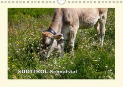 SÜDTIROL-Schnalstal (Wandkalender 2019 DIN A4 quer) von Walliser,  Richard