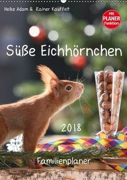 Süße Eichhörnchen (Wandkalender 2018 DIN A2 hoch) von Adam,  Heike