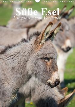 Süße Esel. Langohren zum Verlieben (Wandkalender 2020 DIN A3 hoch) von Stanzer,  Elisabeth