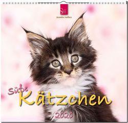 Süße Kätzchen von Hutfluss,  Jeanette