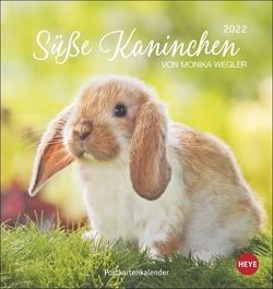 Süße Kaninchen Postkartenkalender 2022 von Heye, Wegler,  Monika