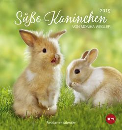 Süße Kaninchen Postkartenkalender – Kalender 2019 von Heye, Wegler,  Monika