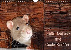 Süße Mäuse und Coole Ratten / CH-Version (Wandkalender 2019 DIN A4 quer) von Eppele,  Klaus