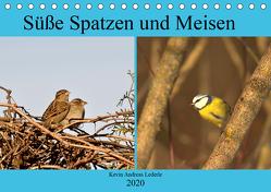 Süße Spatzen und Meisen (Tischkalender 2020 DIN A5 quer) von Andreas Lederle,  Kevin