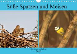 Süße Spatzen und Meisen (Wandkalender 2020 DIN A4 quer) von Andreas Lederle,  Kevin