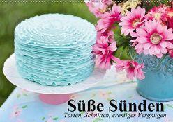 Süße Sünden. Torten, Schnitten, cremiges Vergnügen (Wandkalender 2019 DIN A2 quer) von Stanzer,  Elisabeth