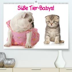 Süße Tier-Babys! (Premium, hochwertiger DIN A2 Wandkalender 2021, Kunstdruck in Hochglanz) von Stanzer,  Elisabeth