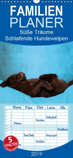 Süße Träume 2019 – schlafende Hundewelpen – Familienplaner hoch (Wandkalender 2019 , 21 cm x 45 cm, hoch) von Hutfluss,  Jeanette